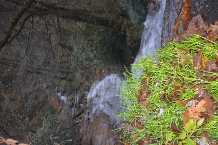 Hidden away in the woods  was this beautiful waterfall