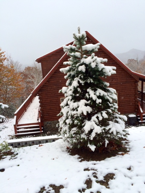 Snowy day at the cabin in the Smoky Mountains