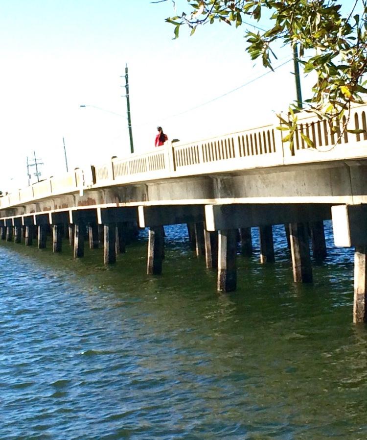 Design lines, Bridge