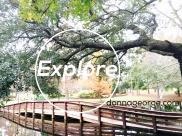 Explore, Park Bridge