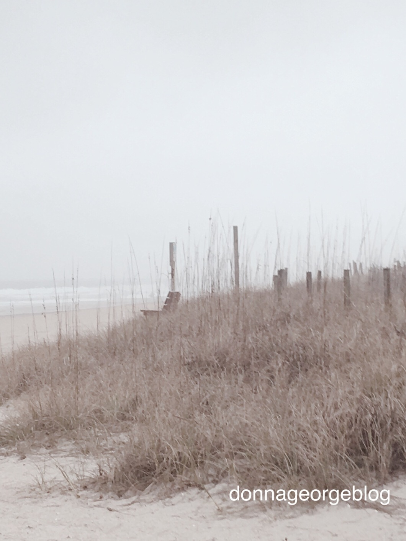 Beach, Sand, empty bench, dune