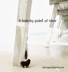 A beachy point of view